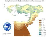 Observed Precipitation-2011-01