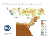 Observed Precipitation-2014-02